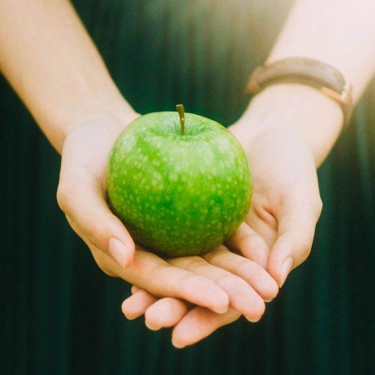 endocrinologia-y-nutricion-online